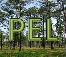 PEL logo2